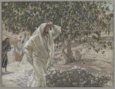 Matthew 21:18 (Tagalog: Ang Dating Biblia (1905))