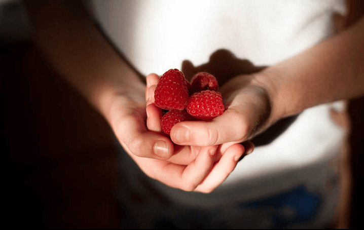 A child holds red raspberries in her cupped hands.