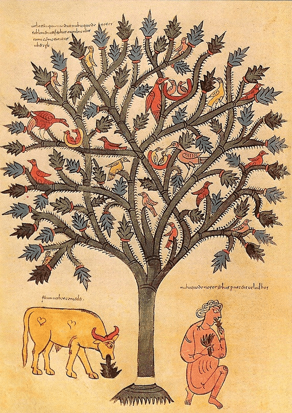 Nebuchadnezzar Dreamed of a Great Tree - an illumination from Beatus of Liebana's  Commentary on the Apocalypse, Spain, 926 AD.